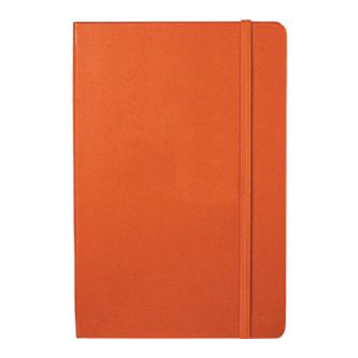 Ambassador Bound JournalBook-Orange