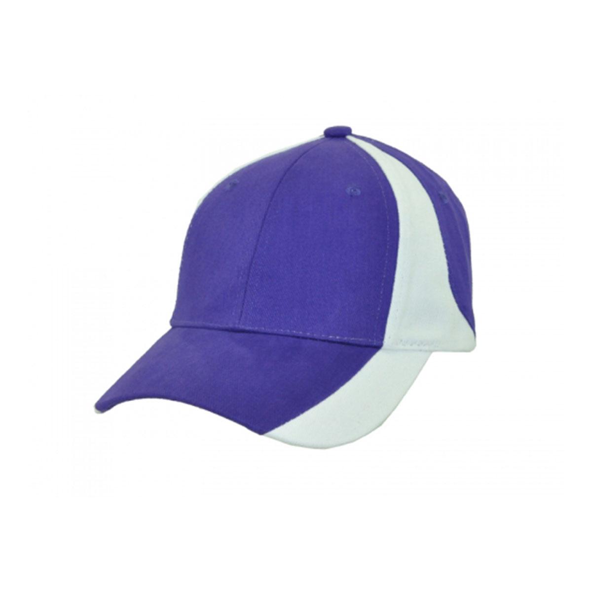 Vertek Cap-Navy / White