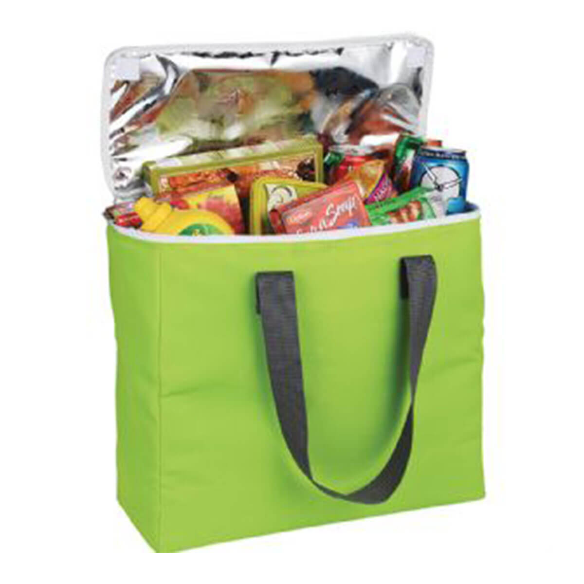 Arctic Zone®  30-Can Foldable Freezer Tote-Green.