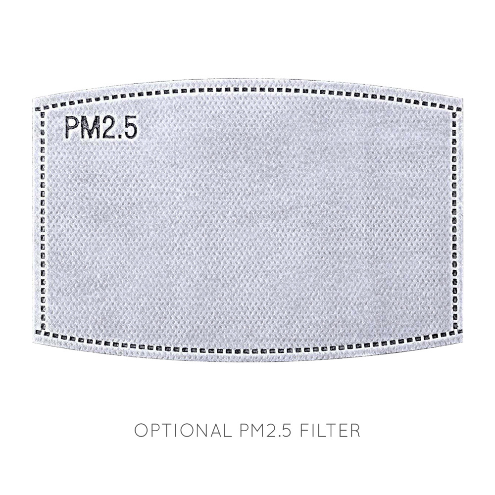 Face Mask Filters-Filter PM2.5